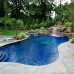 Natural Backyard Swimming Pool