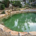 Natural Swimming Pool Designs