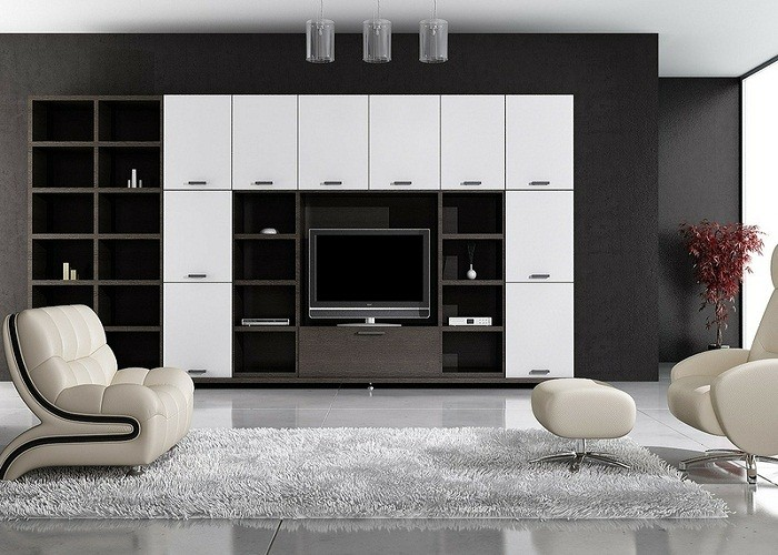 Two Unique Types of Wall Units for a Living Room