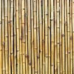 Bamboo Fence Cladding