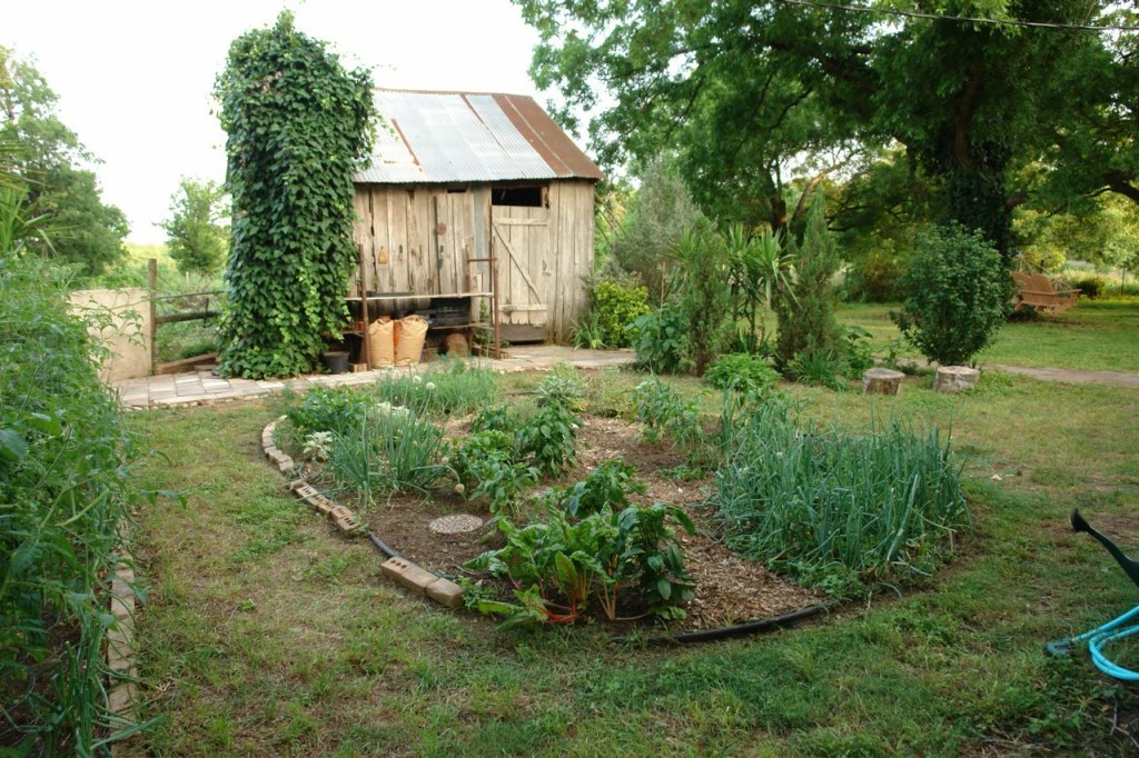 How to Start a Small Vegetable Garden