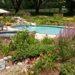 Tropical Pool Landscaping Ideas