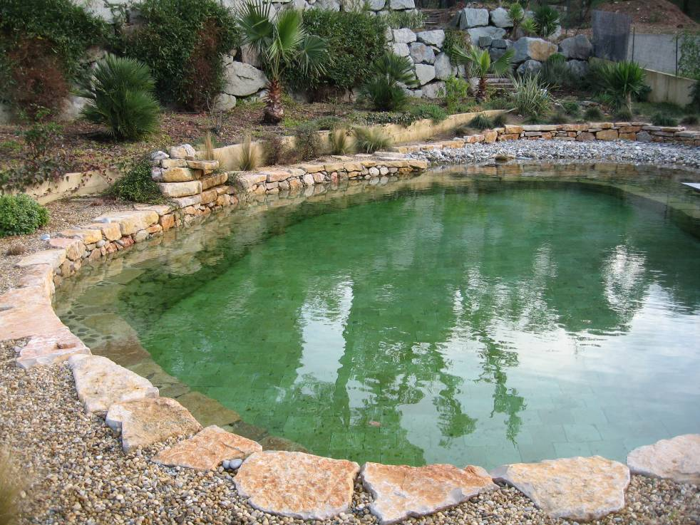 Natural Swimming Pool Designs