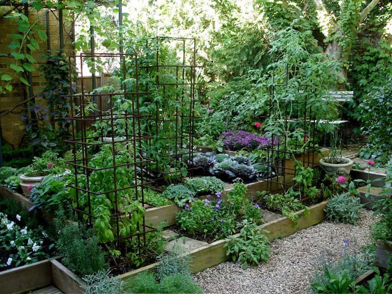 Raised Garden Bed Designs