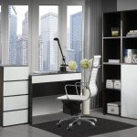 Office Decorations Ideas