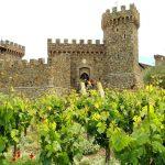 Napa Valley Winery In California