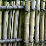 Bamboo Fence Design Ideas