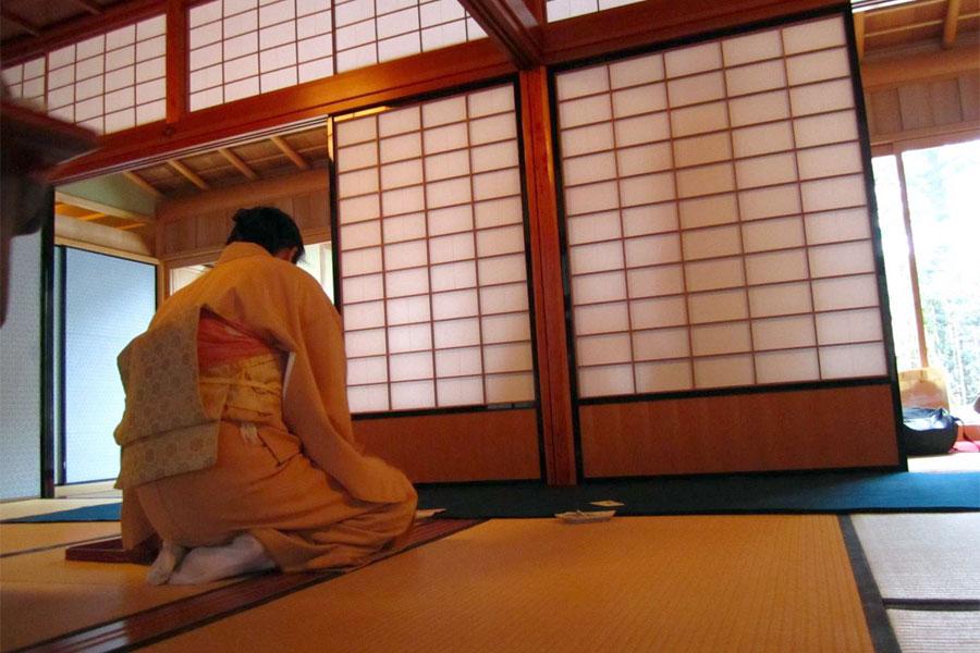 Japanese Style Door
