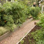 Cheap Small Vegetable Garden Plan