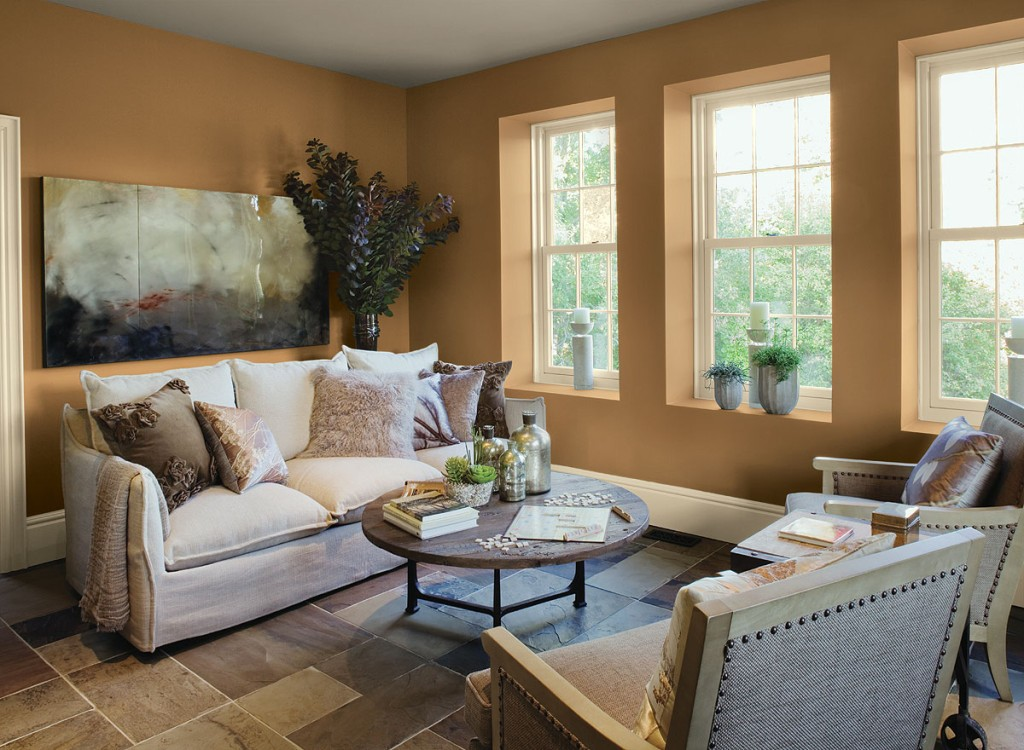 Living room color schemes 1024x750