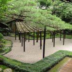 Zen Garden Plants 1024×768