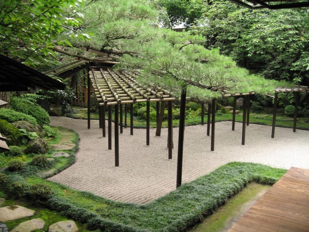 Zen garden plants 1024x768