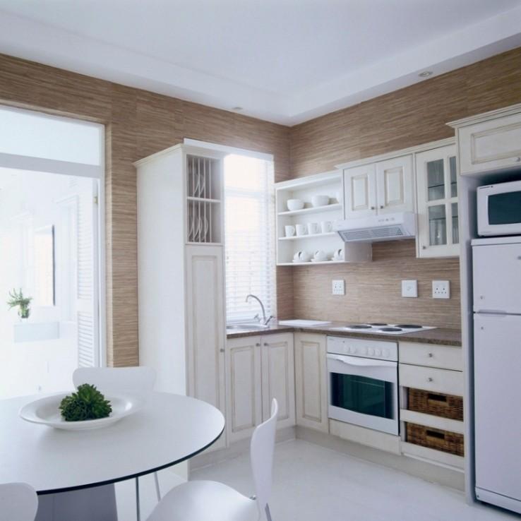 Apartment kitchen designs